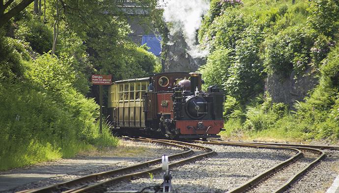 Vale of Rheidol Steam Railway